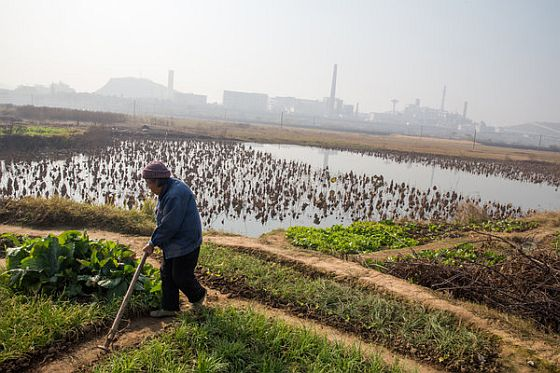soil-pollution-china